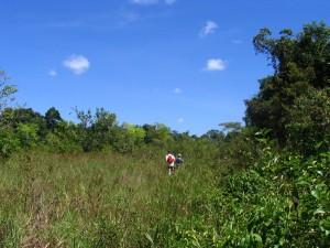 Wandeling Awara Sabana