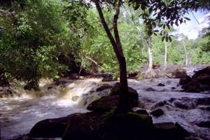 _Sr_Locatie_Suriname-Midden_Tibiti_19990120-0010