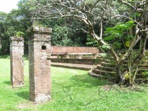 _Sr_Locatie_Suriname-Midden_Redidoti_Jodensavanne_IMG_4533